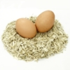 biohansa eggs
