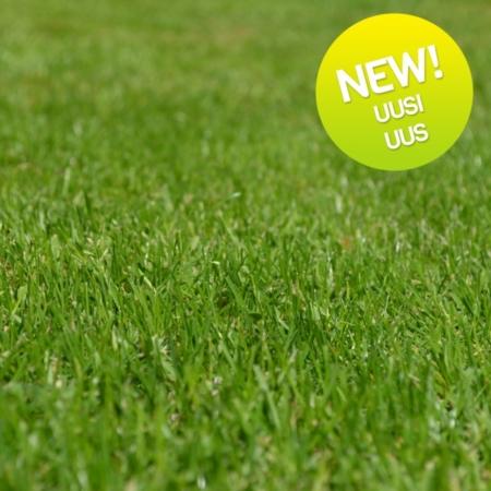 grass-seeds-c-1-e1476035626711